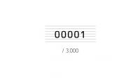 Sydpolbrevet er individuelt nummerert