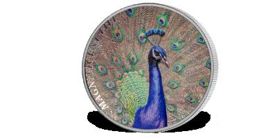 Sølvmynt med svært uvanlig dypdepreg og høyt relieff