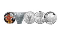 Alliert myntsett i sølv 2020