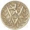 Mindre kjente krigshelter hedret på minnemedaljer
